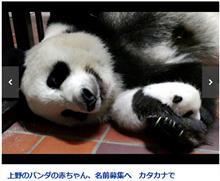 腕枕で寝てるとかって…やってくれるぜ、上野赤パン (^^)