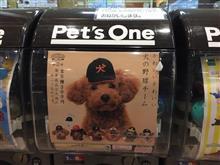 かわいいかわいい犬の野球チーム