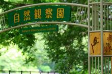 野川公園自然観察園(2017年7月29日)