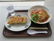 (中華街展) 海鮮入りフカヒレ姿煮スープ炒飯 焼餃子