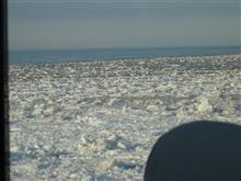 春の北海道で見た流氷群