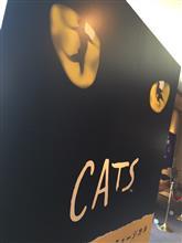 猫のミュージカル