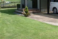 久々の雨で草抜き→芝刈り