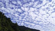 【自転車】石鎚山ヒルクライム参加してきました。