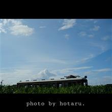 Photo  stroll ~記憶を辿る散歩~