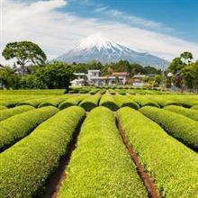 13億もの胃袋を満たすためには「日本の農業に学ばなくては」=中国