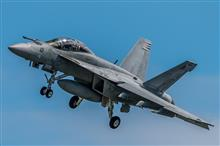 """VFA-102  """"Diamondbacks""""  NF101【F/A-18F】"""