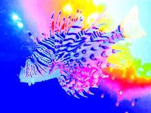 秋の訪れ No.1『目黒さんま祭り&水族館』