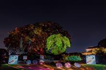 萩ノ夜祭 第二夜