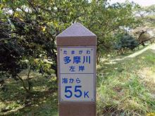 たまりバー50キロ その5 多摩大橋~羽村大橋 と おまけ