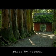 Photo drive ~朝の高原をNewインプレッサでドライブ~