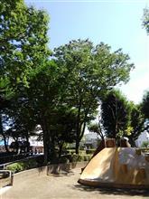 懐かしい公園