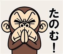 みんカラ:週末モニターキャンペーン【プロスタッフ】