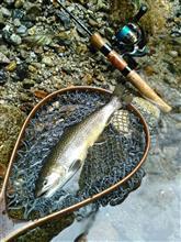 今シーズン最終釣行に備えて…。