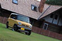 黄色い車の事実……マジかっ⁉️😳