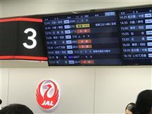 北海道3日目 最終編:無事に飛行機が飛んだ!台風の影響の中。