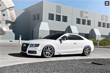 [車道楽日替セール] Audi S5用 Zito Wheels 日本初上陸キャンペーン
