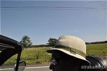 birthday's drive