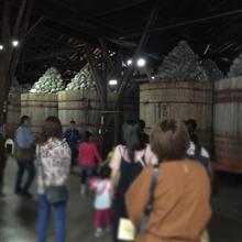 ◆【カクキュー】八丁味噌の工場見学にいきました
