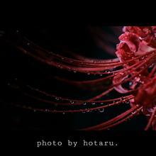 Photo drive ~変わりやすい秋の空~