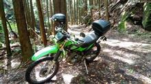 ひさびさの林道TRG