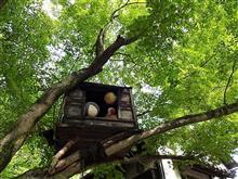 「手作り市」と「鬼太郎茶屋」と。