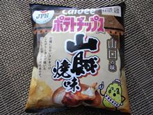 これ買っちゃった・・・(^_-)-☆?。