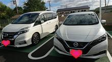 新型リーフ試乗会!