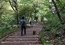チップ散歩で軽井沢方面へ!