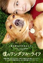 犬と人間の極上のラブストーリー A Dog's Purpose