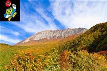 「エコカーフェスティバルin大山」を開催します。