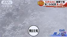 奥日光  雪 ………?(;´Д`)ハァハァ
