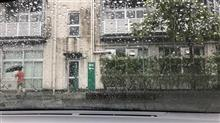 雨ですね、、、