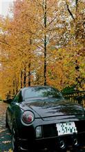 深まる秋 / Autumn Leaves
