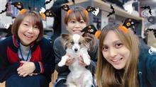 Happy Halloween!!【トライアル発】
