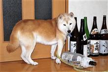 日本酒飲みくらべ シビックも乗り比べ 明治の健康飲み物