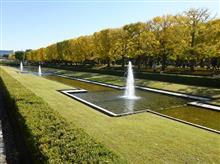昭和記念公園に行ってきました