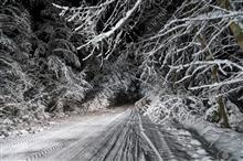 冬の準備..お早めに....ミシュランX-ICE3&X-ICE3+はこの価格