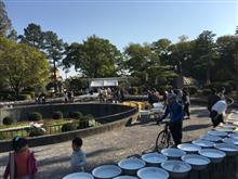 >* ))))><東海金魚品評大会 【地金】親魚部門