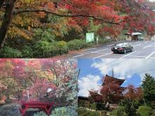 紅葉 横蔵寺~真禅院