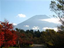 富士五湖界隈~長瀞~寒桜ドライブ♪