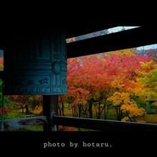 Photo drive ~秋雨に濡れる小京都を切り取る~