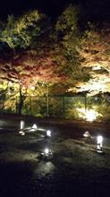 岩屋堂紅葉ライトアップ
