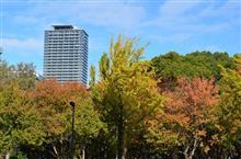 白川公園 紅葉撮影