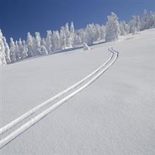 我々が、日本にスキーをしに行くべき、理由はこんなにある=中国メディア