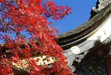筑波山での紅葉狩り