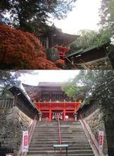 石段と権現造・・・。六所神社