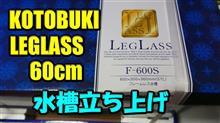 コトブキレグラス60cm水槽の立上げ編(100本記念)