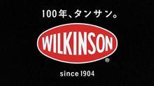 ウィルキンソン 辛口ジンジャーエール
