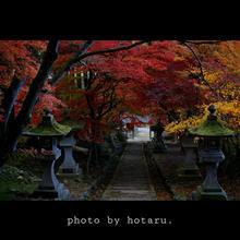 清水寺の紅葉 2017